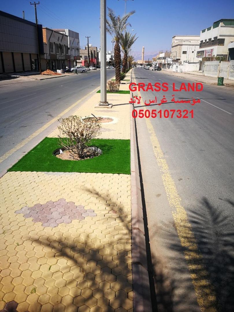 Grass land,مؤسسة,غراس لاند,توريد,تركيب,العشب,الصناعي,الجداري,حدائق,عشب جداري,ملاعب 0505107321