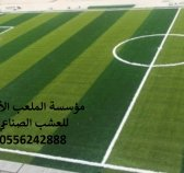 مؤسسة,الملعب,الأول,العشب,الصناعي,ديكورات,الحدائق, تجهيزات,الملاعب,الرياضية,ديكورية,للحدائق,العشب, ال